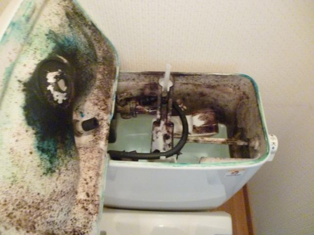 トイレ手洗いタンク内部掃除