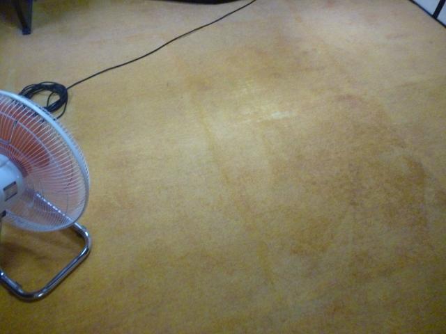 奈良市でカーペット掃除