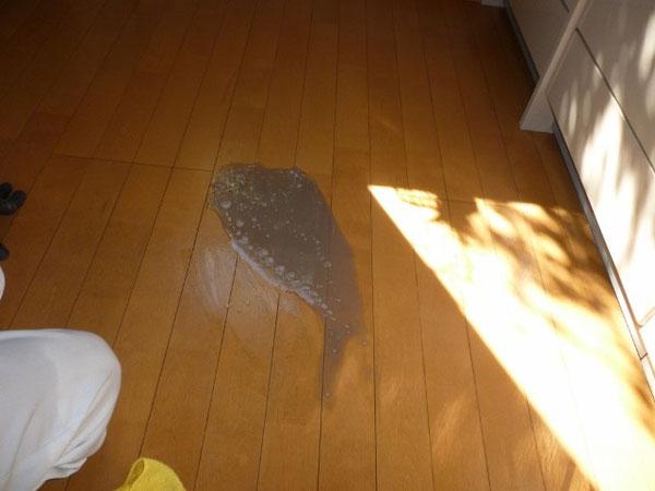 池田市でフローリング床ワックス剥離