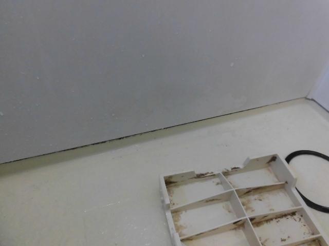 お風呂(浴室)掃除 八幡市