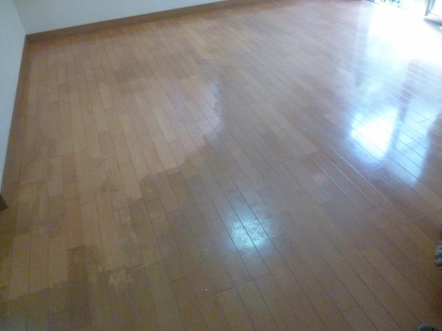 京都で床ワックス剥離