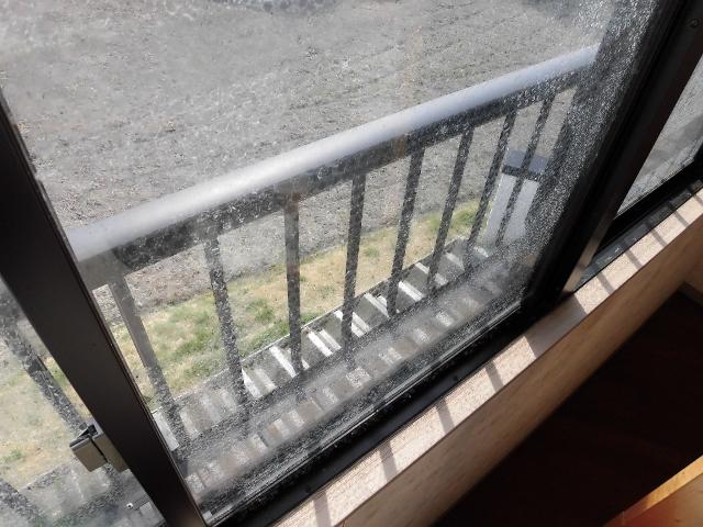 窓の粘着シール剥がし